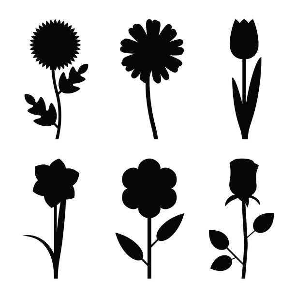 flowers black silhouettes - plant stem stock illustrations