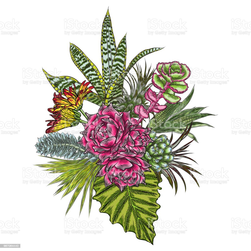 Flowers Bouquet Floral Collection With Various Exotic Jungle Plants ...