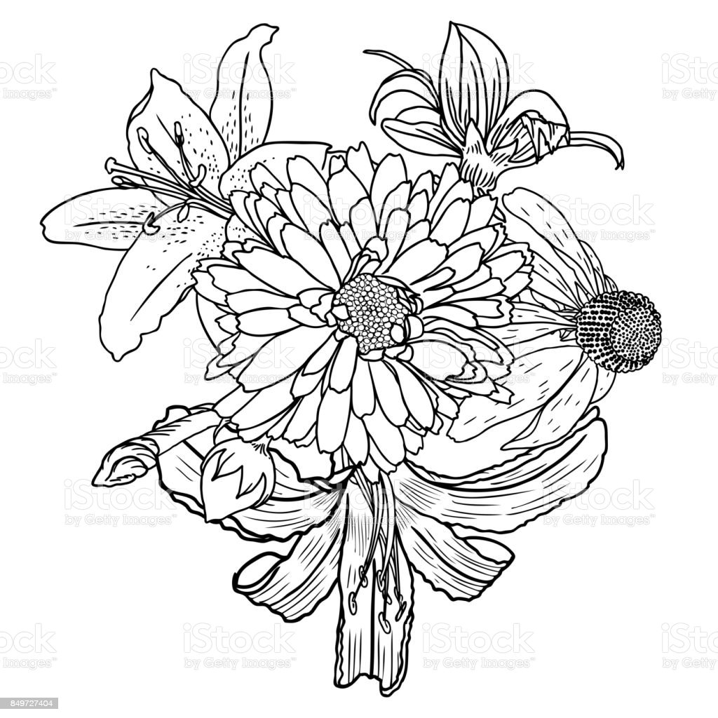 Flower Bouquet Line Drawing : Flowers bouquet of different hand drawn vintage