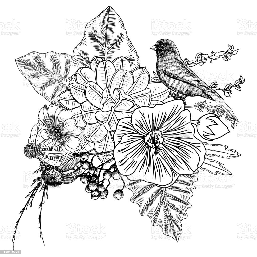 Vetores De Flores Buque De Diferentes De Flores Desenhadas Vintage