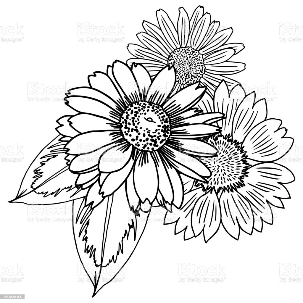 Flowers Bouquet Of Different Hand Drawn Vintage Black White And Isolated Can