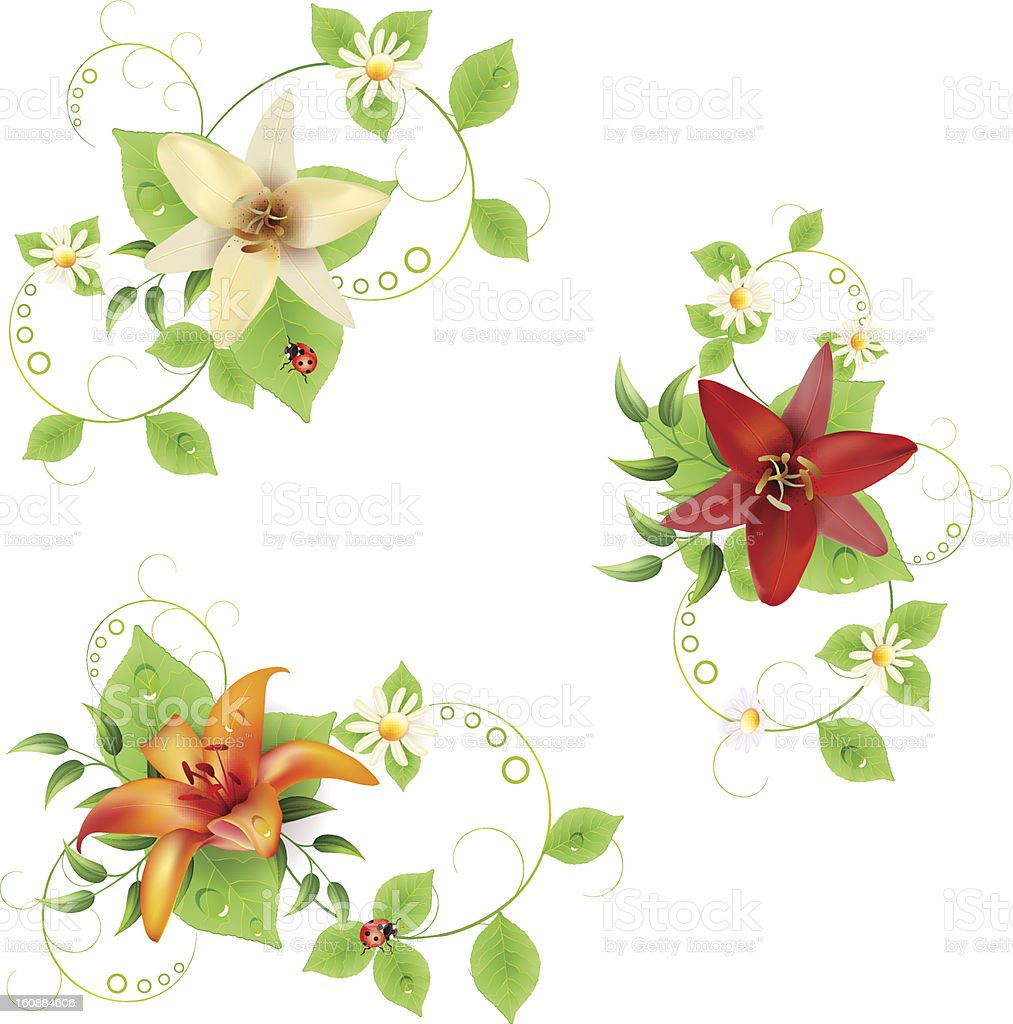 Flowers bouquet royalty-free stock vector art
