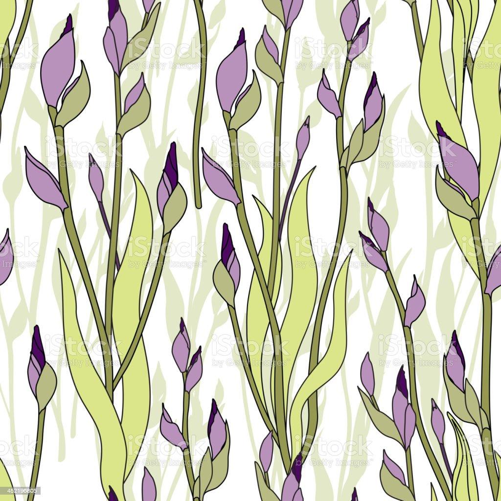 Flowers bud iris seamless wallpaper royalty-free stock vector art