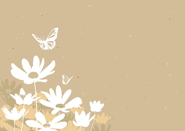 Flowers & Butterflies  daisy stock illustrations