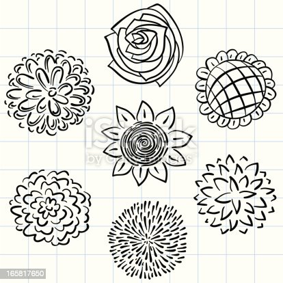 Flowers collection in sketch style,black and white.