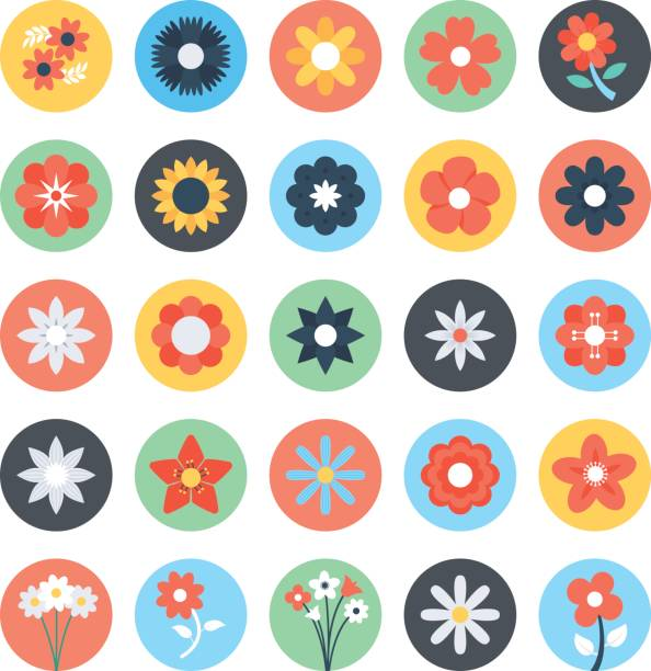 blumen-farbigen vektor-icons 3 - inkalilie stock-grafiken, -clipart, -cartoons und -symbole