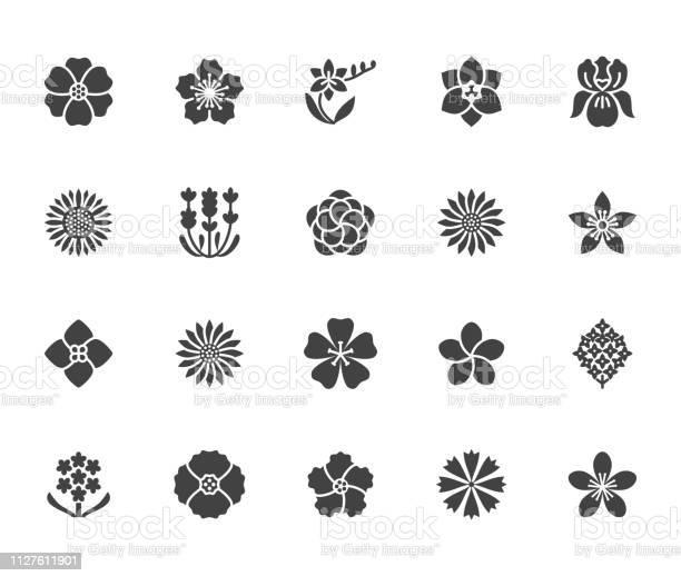 Flowers flat glyph icons beautiful garden plants sunflower poppy vector id1127611901?b=1&k=6&m=1127611901&s=612x612&h=tbevzy2blcqlovtws1ko8dpcgyhqp5mq4kyfl8ezdb4=