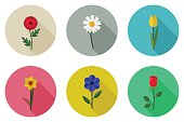 Flowers flat icons with long shadow. Vector simple illustration of garden flowers.