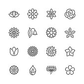 Flowers flat line icons. Beautiful garden plants - chamomile, sunflower, rose flower, lotus, carnation, dandelion, violet blossom. Thin signs for floral store. Pixel perfect 48x48 Editable Strokes