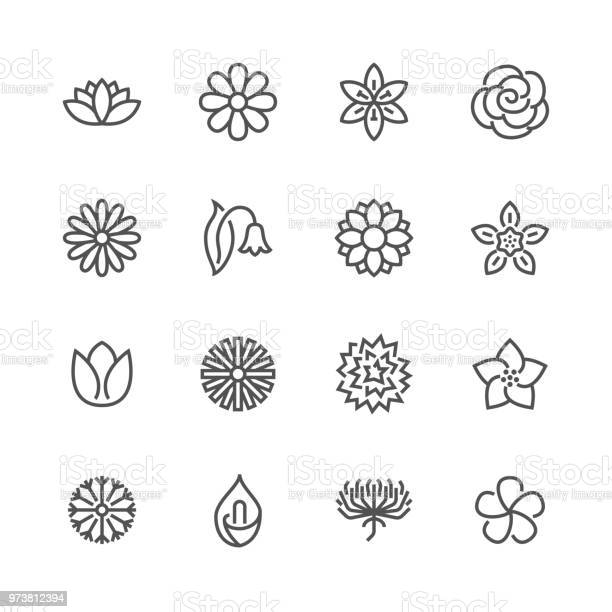 Flowers flat line icons beautiful garden plants chamomile sunflower vector id973812394?b=1&k=6&m=973812394&s=612x612&h=rbq plst8x1 qbd0u7jg9cogh8owz41hjroi1b8au10=