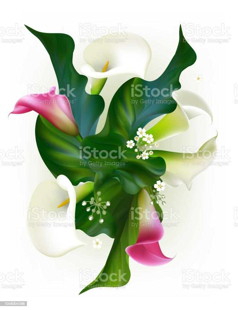 Fleurs. Floral fond. Callas. Des feuilles vertes. Motif de fleurs. Rose.  Roses. Bouquet. - Illustration vectorielle