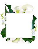Flowers. Floral background. Callas. Orchids. Green leaves. Flower pattern. White. Frame. Bouquet.