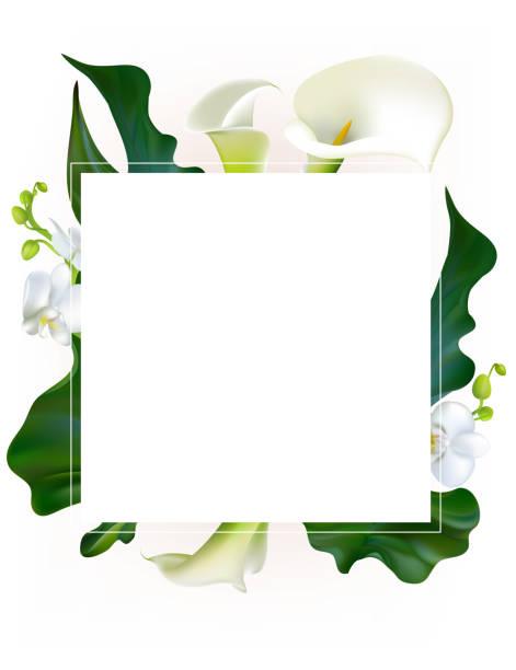 Fleurs. Floral fond. Callas. Orchidées. Des feuilles vertes. Motif de fleurs. Blanc. Cadre. Bouquet. - Illustration vectorielle