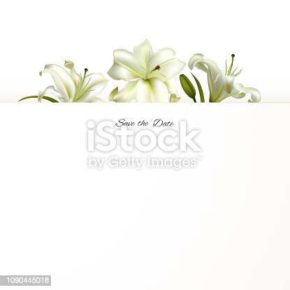 Flowers. Floral background. Lilies. White. Green leaves. Border.