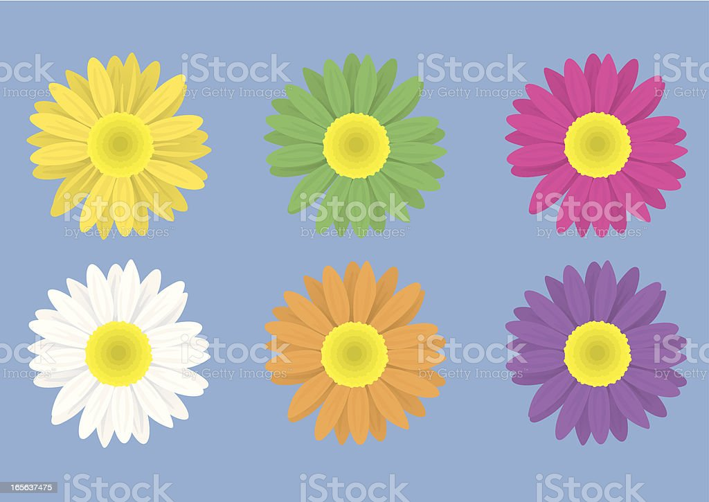 Flowers Front vector art illustration