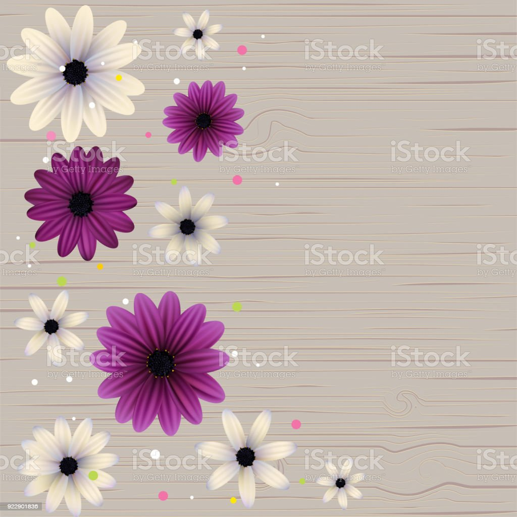 Flowers Gerbera Daisy Violet White Floral Background Border Wreath
