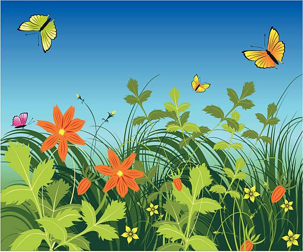 illustrazioni stock, clip art, cartoni animati e icone di tendenza di erba, fiori e farfalla - farfalla ramo