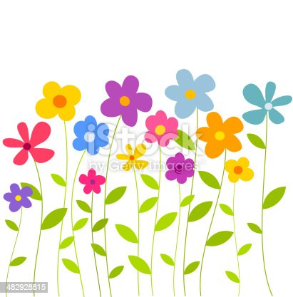 Colorful flowers growing on meadow. Vector illustration