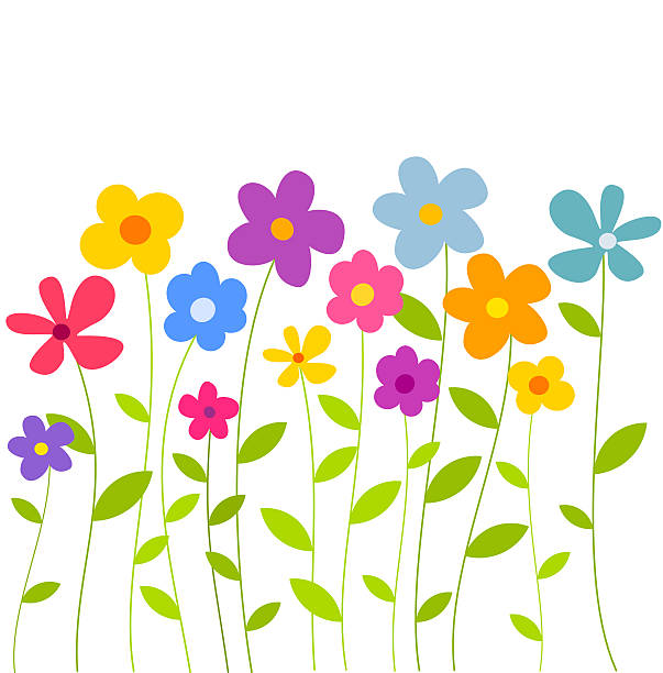 Flowers growing Colorful flowers growing on meadow. Vector illustration flowerbed stock illustrations