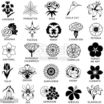 Icon set of 25 common and popular flowers. Single color. Isolated.