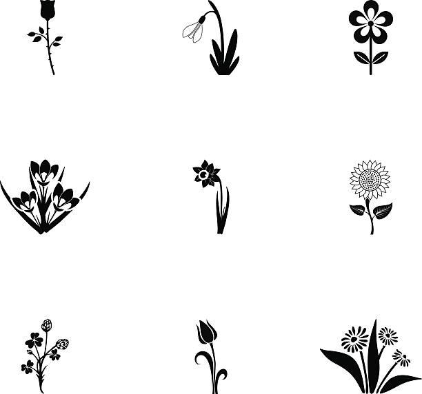 illustrations, cliparts, dessins animés et icônes de fleurs ensemble d'icônes - crocus