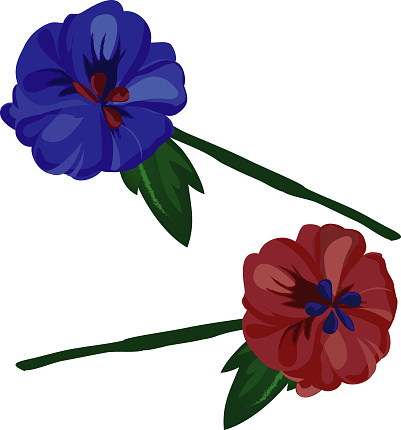 Flowers in red and blue on white background. - Illustration. vector