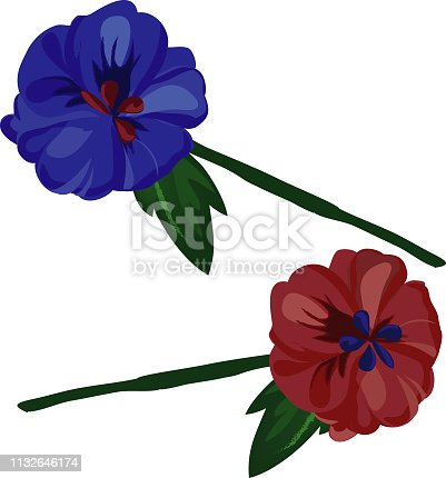 istock Flowers in red and blue on white background. - Illustration. vector 1132646174