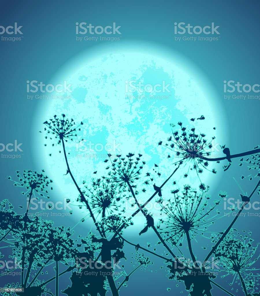 flowers in the night royalty-free flowers in the night stock vector art & more images of abstract