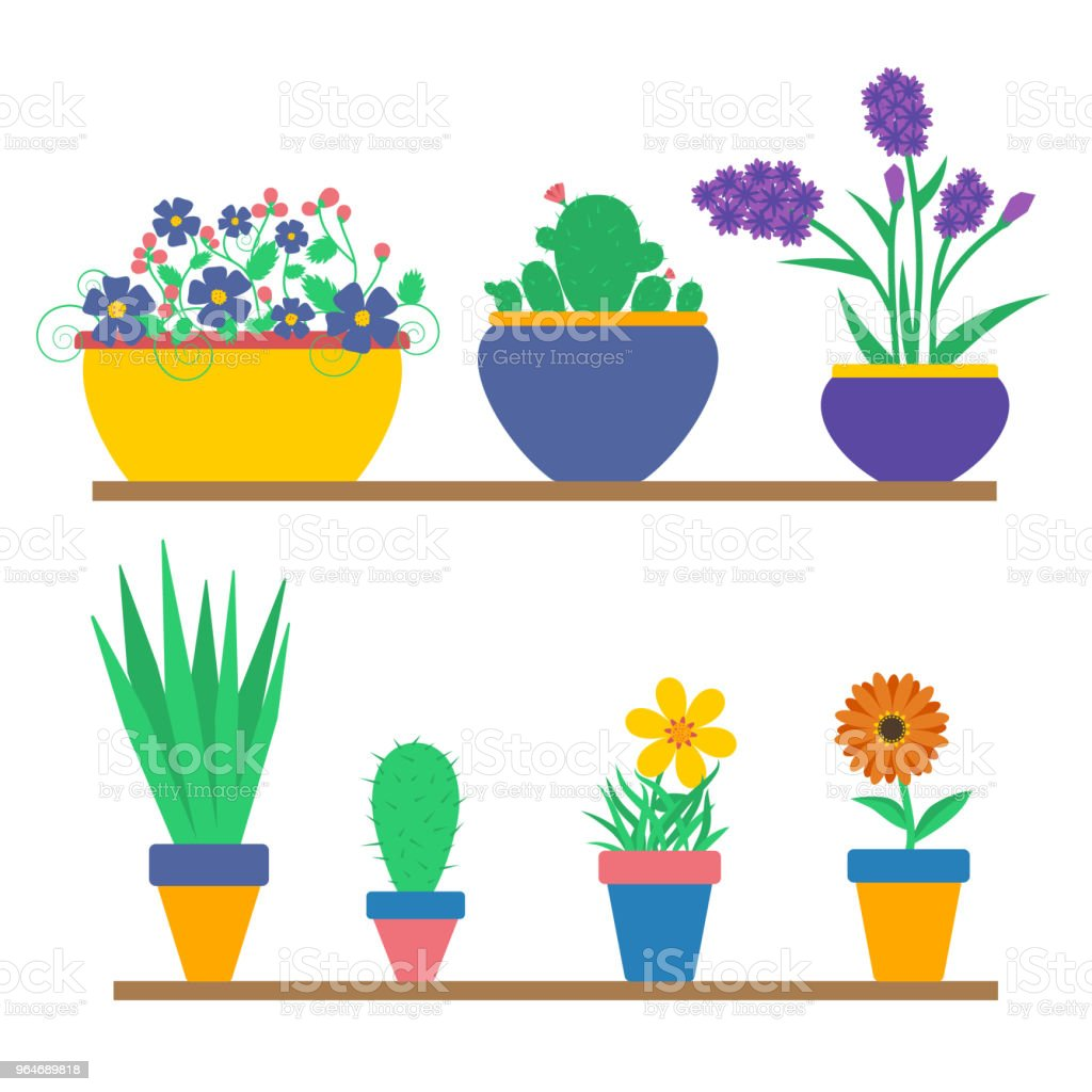 Flowers in the pots royalty-free flowers in the pots stock vector art & more images of botany