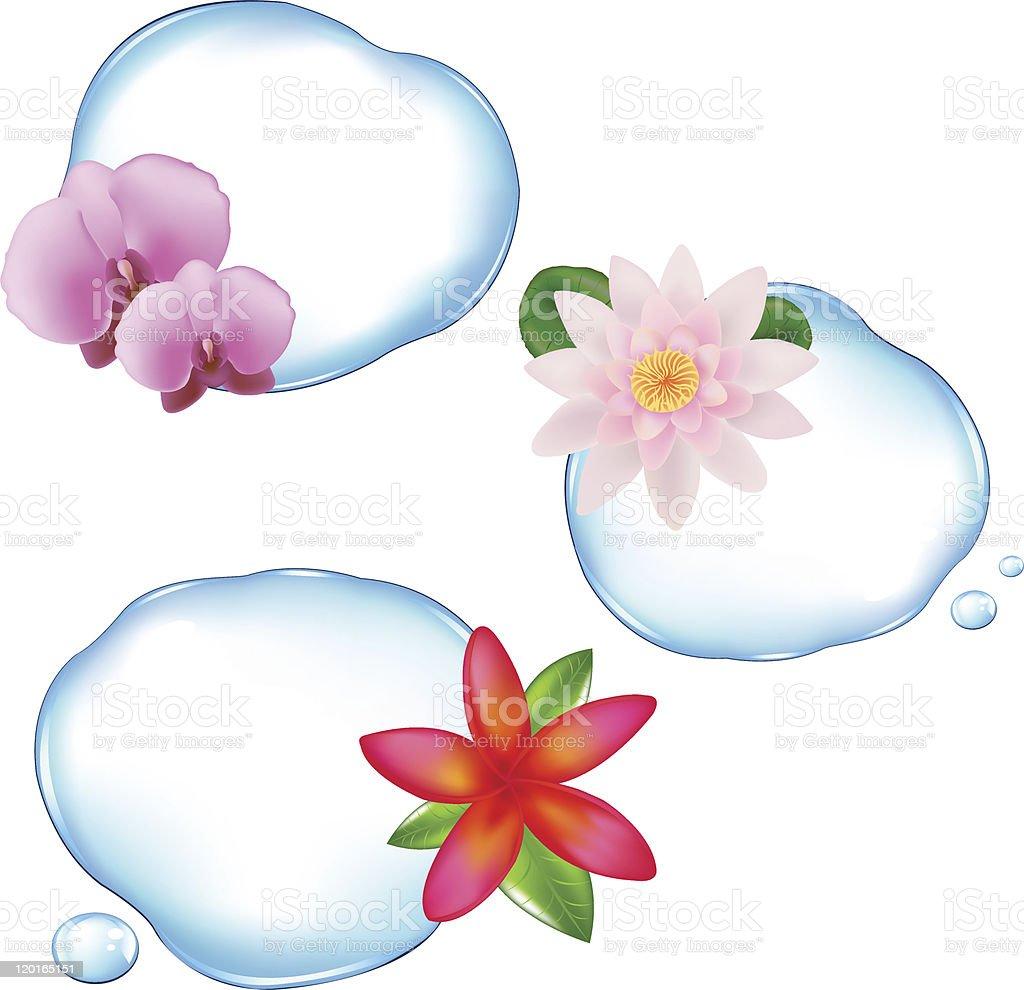 Flowers In Water royalty-free stock vector art