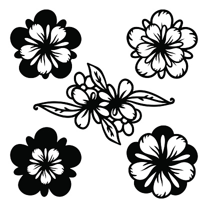 Flowers isolated