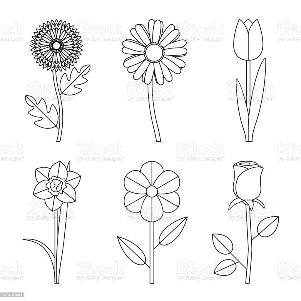 Dessins Fleurs Cliparts Vectoriels Et Plus D Images De Activite