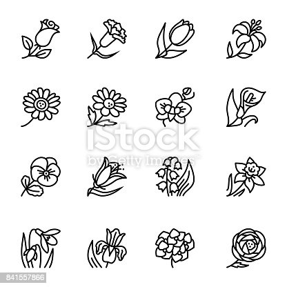 Vector illustration for pattern and background