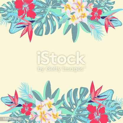 istock flowers, palm leaves, jungle leaves, hibiscus,plumeria summer background 1220125045