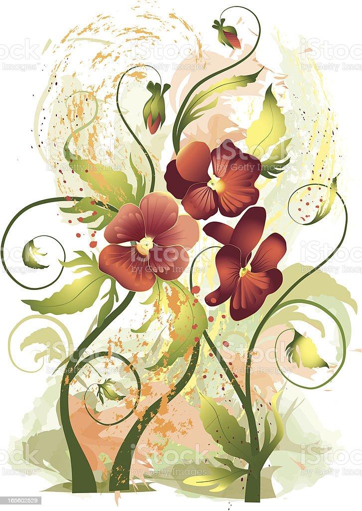 Flowers pansies royalty-free stock vector art