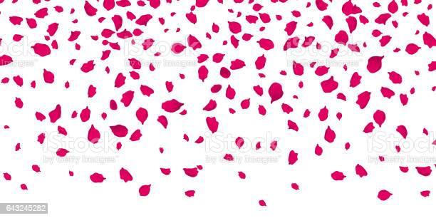 Flowers petals falling on vector transparent background vector id643245282?b=1&k=6&m=643245282&s=612x612&h=y3txn 5cev0ptrw3abmcnsqu9tdqkzj5yqczm95l9no=