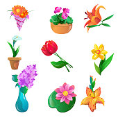 Collection of colorful flowers set calla, alstroemeria, dahlias, tulips, narcissus, lilac, water lily, lily, violet. Colorful raster isolated flat icons set on white background.