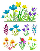 Vector iilustration of the spring and summer flowers