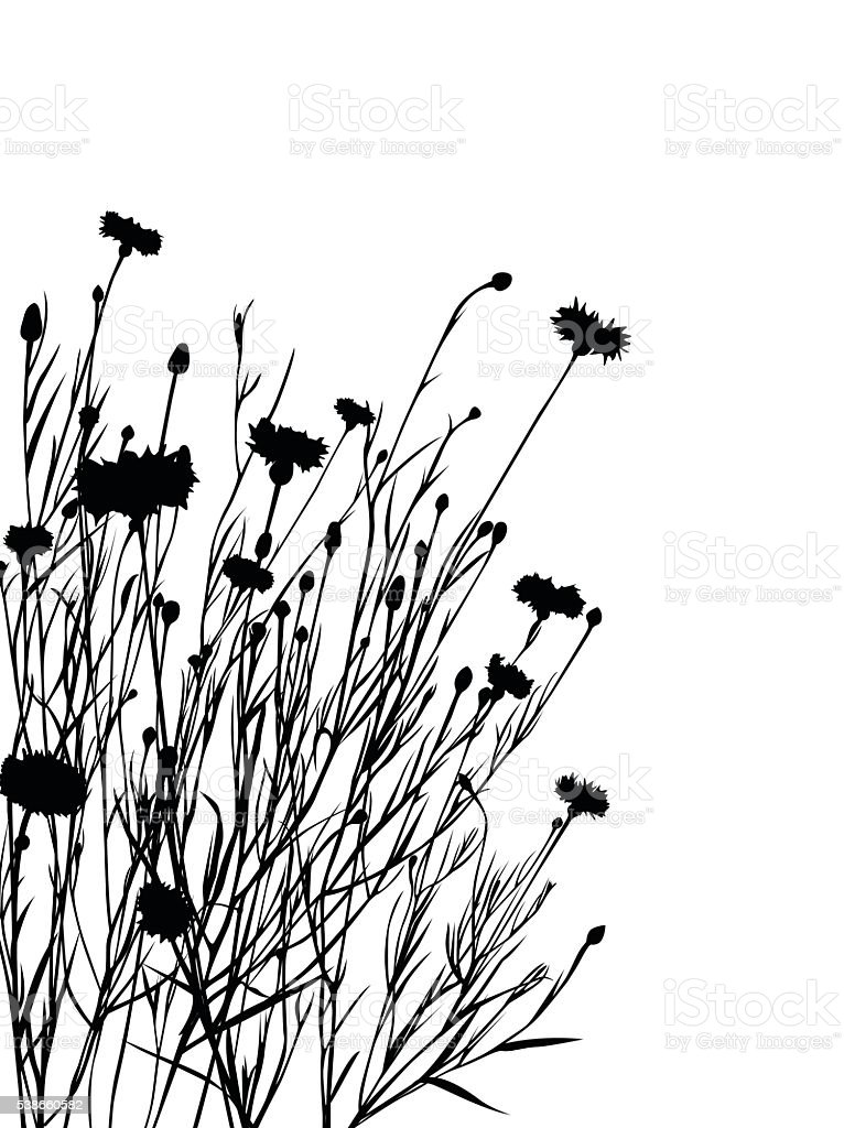 Flowers silhouette stock vector art more images of back for Black and white only
