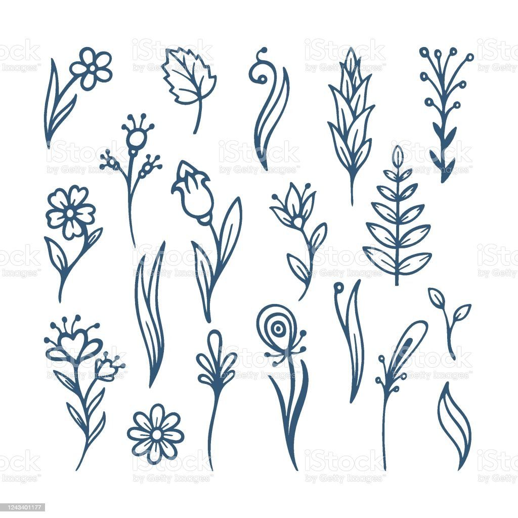 Flowers Sketch Drawing Collection Hand Drawn Flowers Brushes Stock Illustration Download Image Now Istock