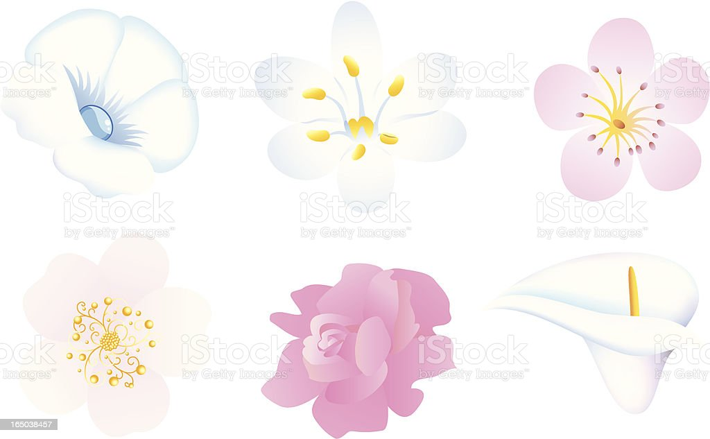 Flowers royalty-free stock vector art