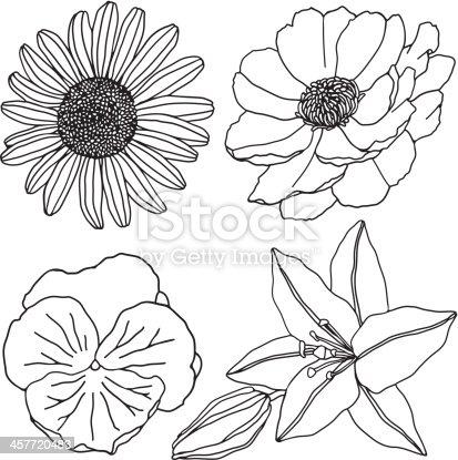 istock flowers (line) 457720483