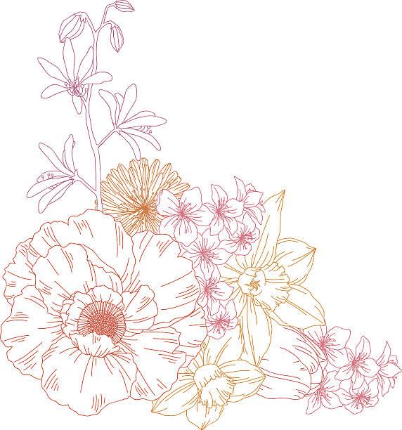 Flowers Hand drawn vector illustration of flowers. wild rose stock illustrations