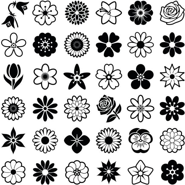 Flowers Flower icon collection - vector illustration daisy stock illustrations
