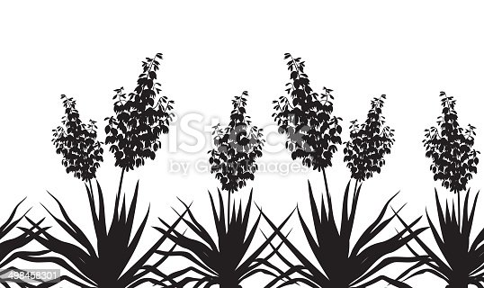 Horizontal seamless of flowers and plants Yucca, black silhouette isolated on white background. Vector