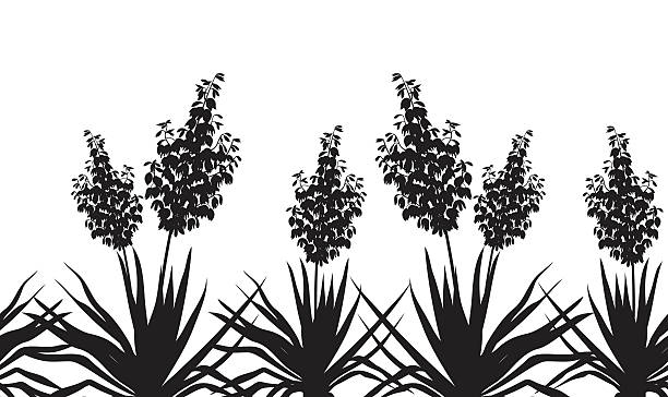 Flowers Yucca silhouette, horizontal seamless Horizontal seamless of flowers and plants Yucca, black silhouette isolated on white background. Vector flower part stock illustrations