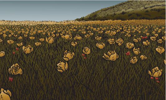 Flowery Meadow I