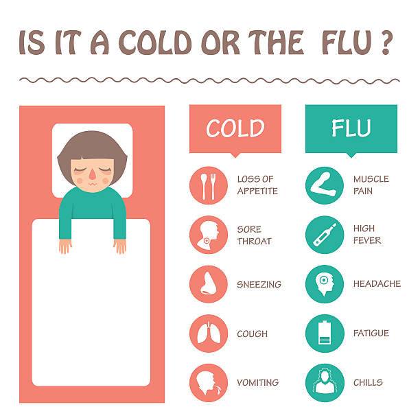 flu and cold disease symptoms  flu and cold disease symptoms infographic, vector sick icon illustration  pneumonia stock illustrations