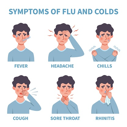 Flu symptoms. Common cold and flu symptoms infographics. Fever, cough and sore throat, snot, chills. Healthcare medical flat vector diagram