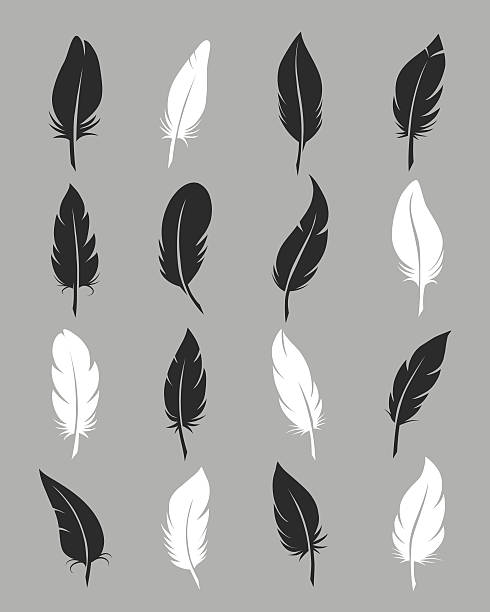 Fluffy feather vector icons Feathers icons. Fluffy black and white feather vector symbols on grey background bristle animal part stock illustrations
